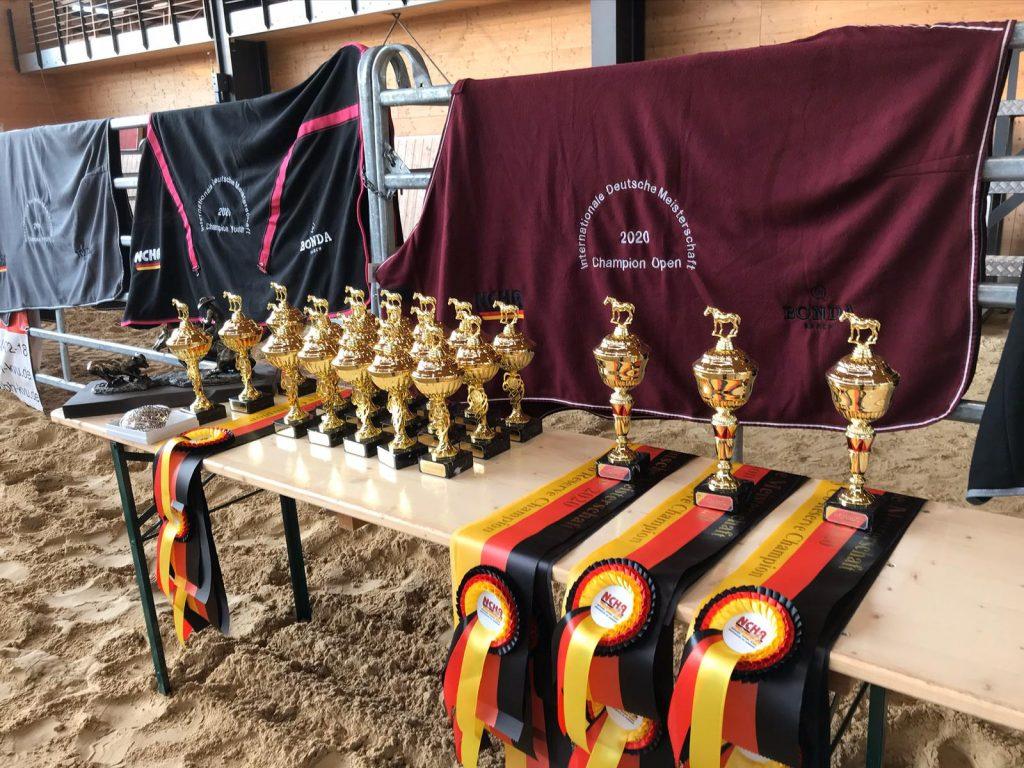 Attraktive Preise für Pferd und Reiter, Wimpel und Pokale